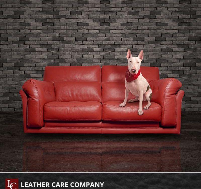 5 предимства на кожените мебели